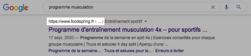 serps exemple google